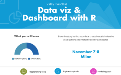 R live class | Data Visualization and Dashboard with R | Nov 7-8 Milan